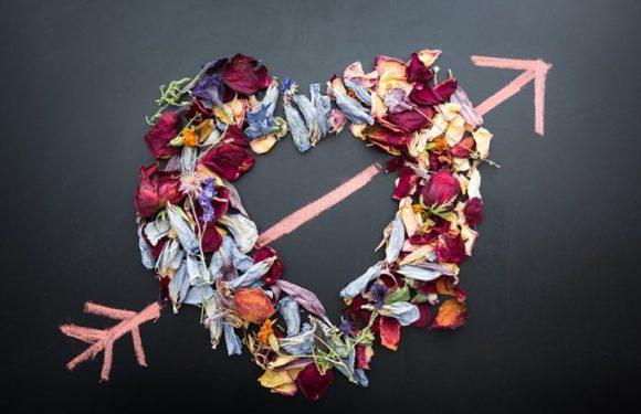 Самый популярный подарок на День святого Валентина и день всех влюбленных