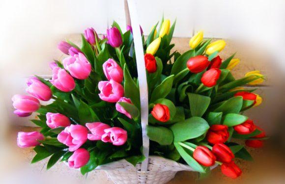 8 марта-выходной, история, картинки, открытки, стихи смс, поздравления, подарки
